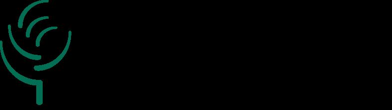 logo.lauzon
