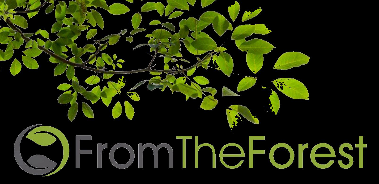 logo.fromtheforest